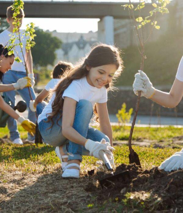 dzieci sadzą drzewa