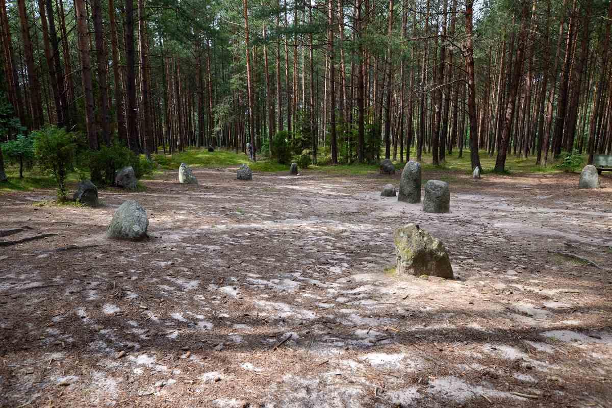 Kamienne kręgi w lesie w Węsiorach